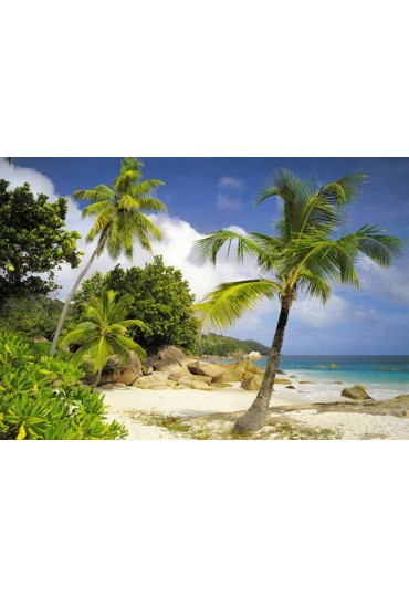 painel-fotografico-8-partes-praias-paradisiacas-cod-8-885