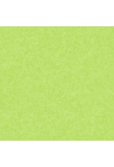 papel-de-parede-girl-power-verde-cod-kd-1875