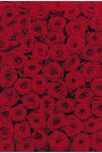 painel-fotografico-4-partes-roses-cod-4-077