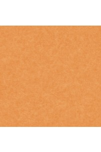 papel-de-parede-girl-power-laranja-cod-kd-1885