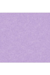 papel-de-parede-girl-power-lilas-cod-kd-1886